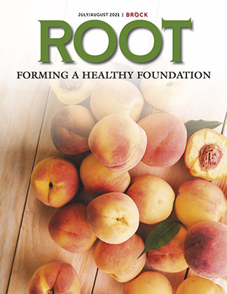 ROOT cover for July/August